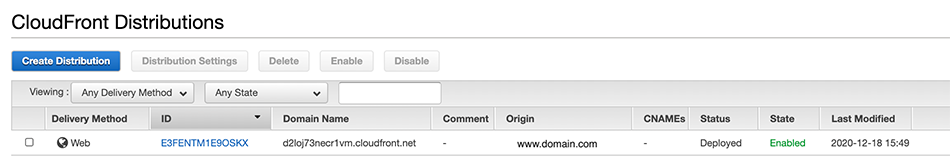 Custom distribution with Domain Name